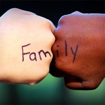 5 fattori di rischio alla base di un'adozione