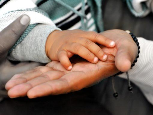 Aree critiche dell'adozione